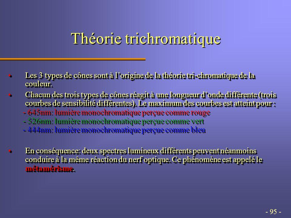- 95 - Théorie trichromatique Les 3 types de cônes sont à lorigine de la théorie tri-chromatique de la couleur.Les 3 types de cônes sont à lorigine de la théorie tri-chromatique de la couleur.