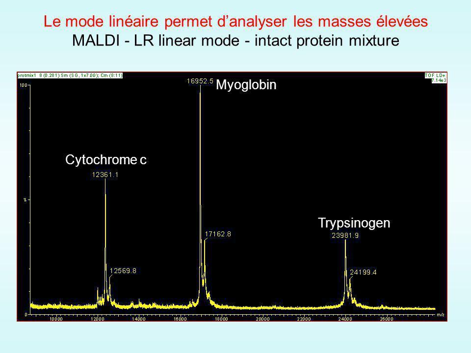 Le mode linéaire permet danalyser les masses élevées MALDI - LR linear mode - intact protein mixture Cytochrome c Myoglobin Trypsinogen