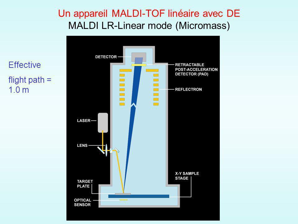 Un appareil MALDI-TOF linéaire avec DE MALDI LR-Linear mode (Micromass) Effective flight path = 1.0 m