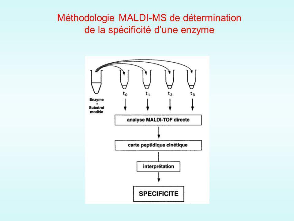 Méthodologie MALDI-MS de détermination de la spécificité dune enzyme