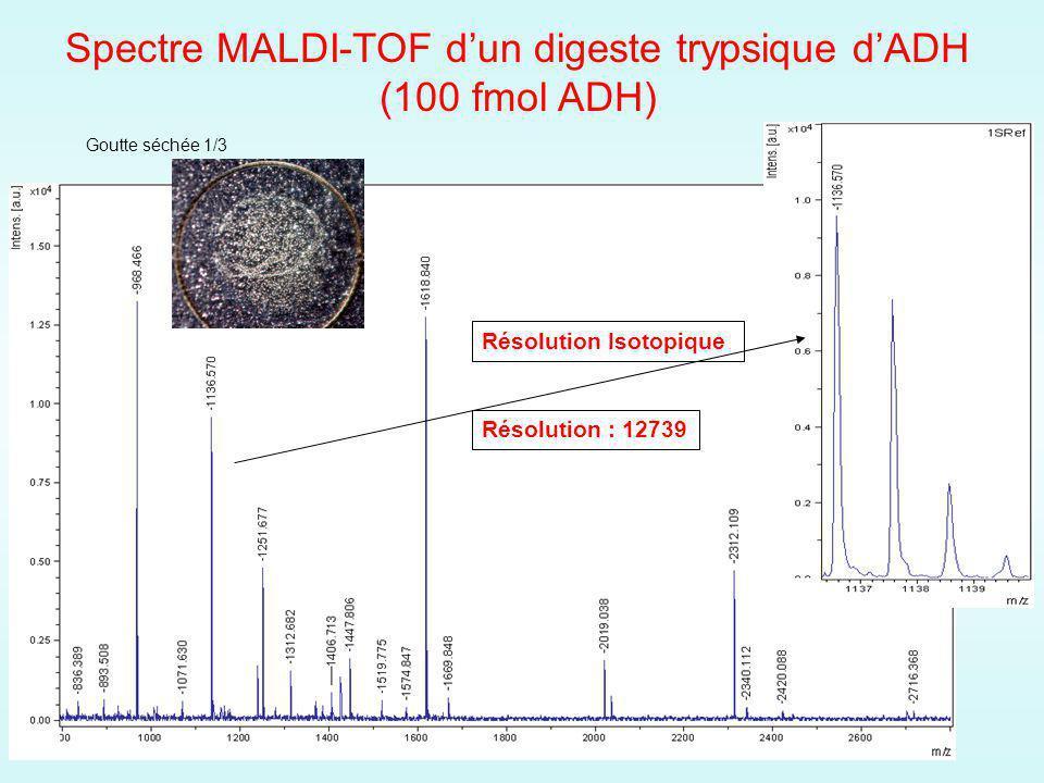 Goutte séchée 1/3 Résolution : 12739 Spectre MALDI-TOF dun digeste trypsique dADH (100 fmol ADH) Résolution Isotopique