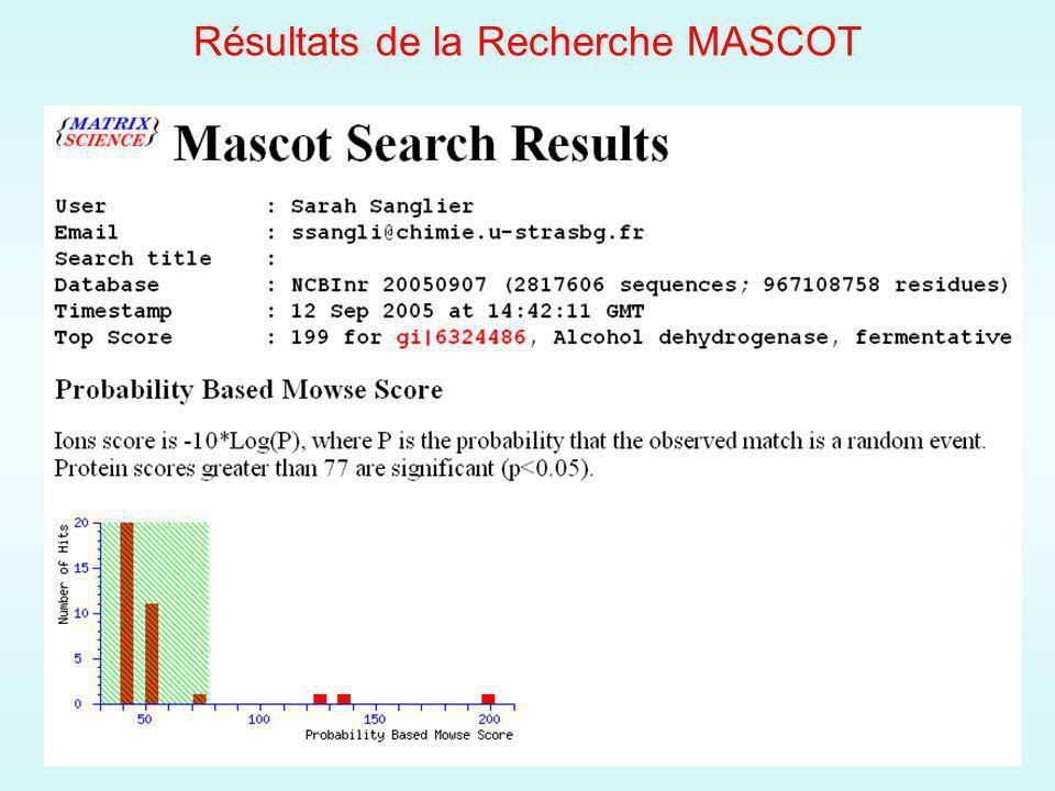 Résultats de la Recherche MASCOT