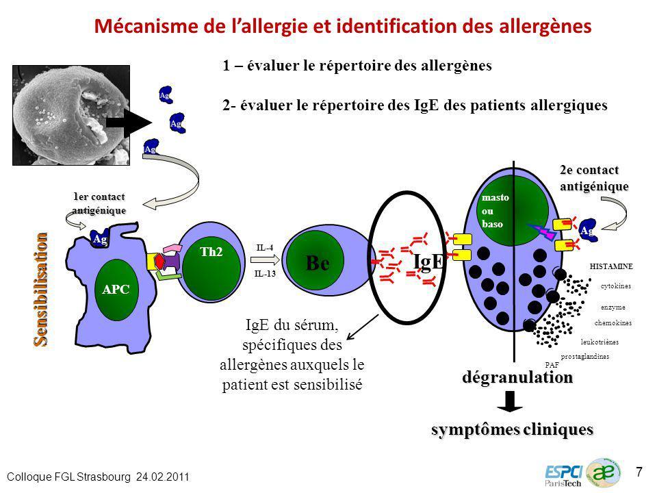 Sensibilisationdégranulation symptômes cliniques Ag APC 1er contact antigénique Th2 IL-4 IL-13 Be IgE cytokines leukotriènes PAF prostaglandines enzyme 2e contact antigénique Ag HISTAMINE chemokines masto ou baso IgE du sérum, spécifiques des allergènes auxquels le patient est sensibilisé 1 – évaluer le répertoire des allergènes 2- évaluer le répertoire des IgE des patients allergiques Colloque FGL Strasbourg 24.02.2011 7 Mécanisme de lallergie et identification des allergènes