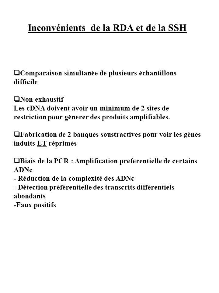 Inconvénients de la RDA et de la SSH Comparaison simultanée de plusieurs échantillons difficile Non exhaustif Les cDNA doivent avoir un minimum de 2 s