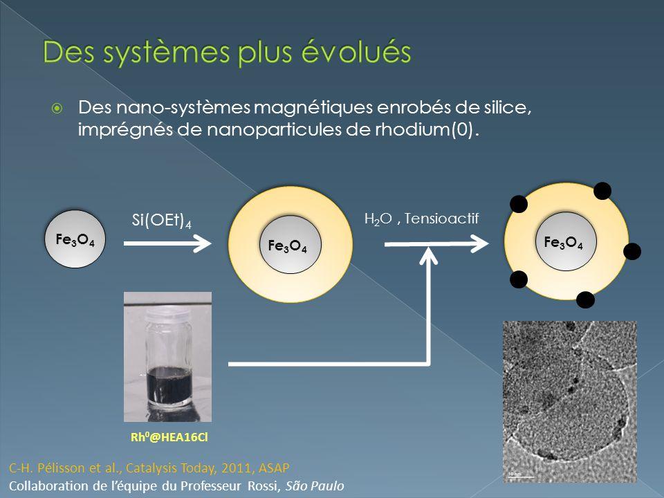 Des nano-systèmes magnétiques enrobés de silice, imprégnés de nanoparticules de rhodium(0). Fe 3 O 4 C-H. Pélisson et al., Catalysis Today, 2011, ASAP