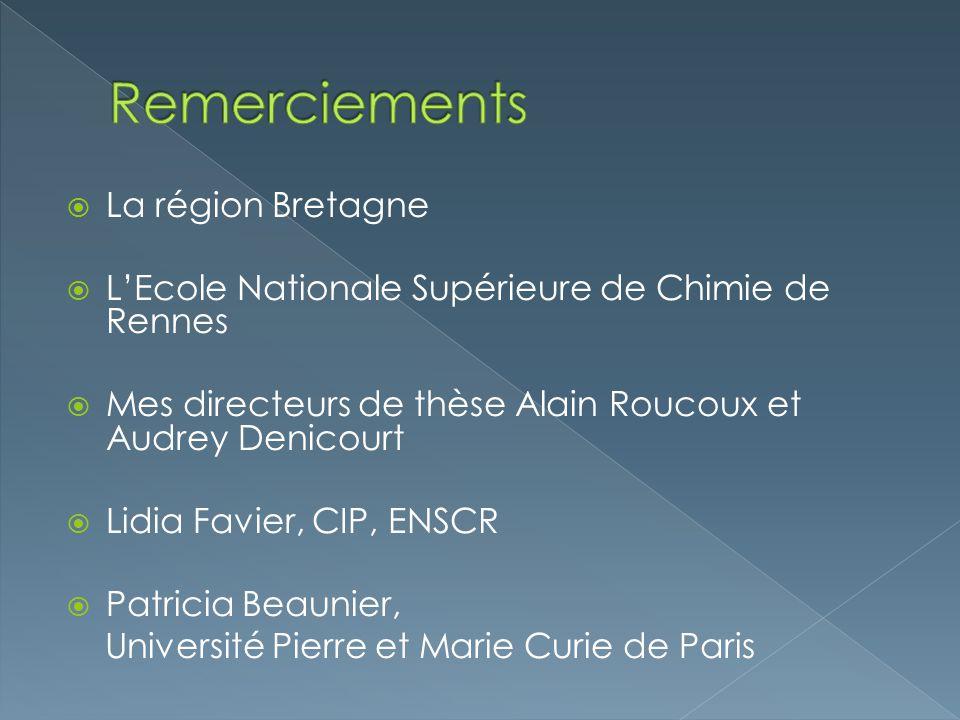 La région Bretagne LEcole Nationale Supérieure de Chimie de Rennes Mes directeurs de thèse Alain Roucoux et Audrey Denicourt Lidia Favier, CIP, ENSCR