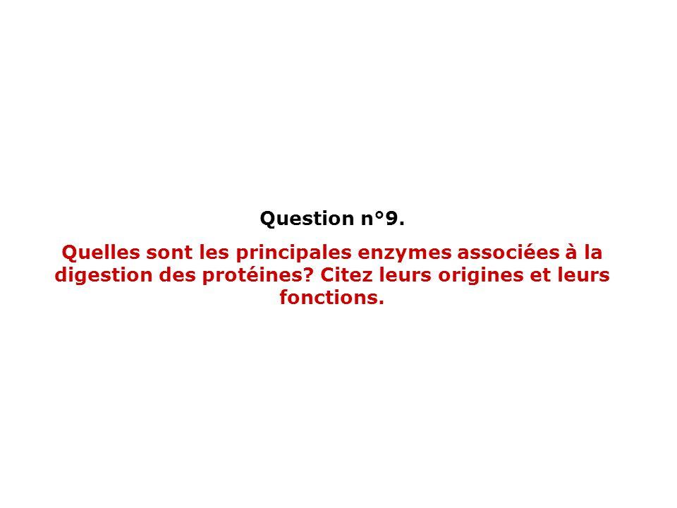 Question n°9. Quelles sont les principales enzymes associées à la digestion des protéines? Citez leurs origines et leurs fonctions.