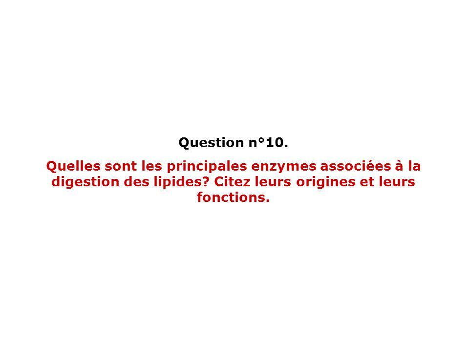 Question n°10. Quelles sont les principales enzymes associées à la digestion des lipides? Citez leurs origines et leurs fonctions.