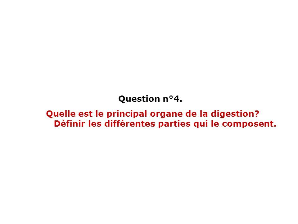 Question n°4. Quelle est le principal organe de la digestion? Définir les différentes parties qui le composent.