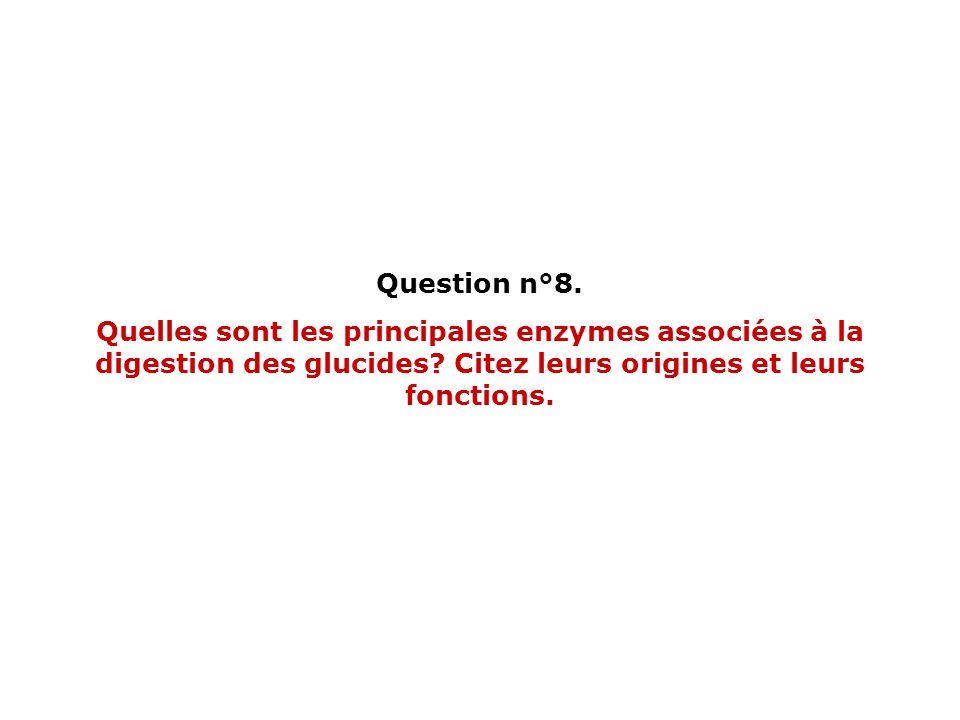 Question n°8. Quelles sont les principales enzymes associées à la digestion des glucides? Citez leurs origines et leurs fonctions.