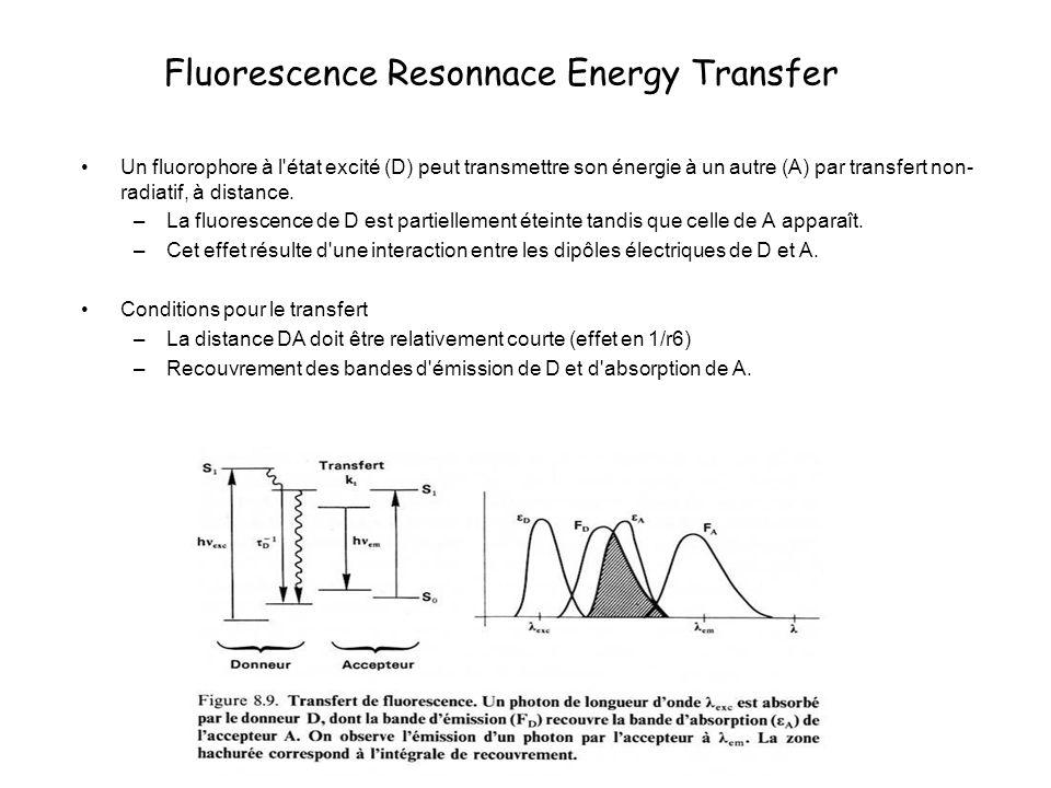 Transfert de fluorescence On définit une constante de vitesse de transfert kT –r0 : distance de Förster, caractéristique du couple DA (distance pour laquelle on observe une efficacité de transfert de 50%) – tf : temps de vie du donneur en l absence de l accepteur L efficacité de transfert est donné par : La distance DA peut être calculée :