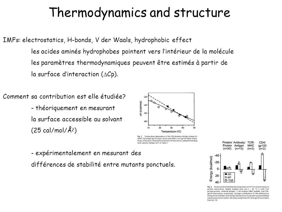 Thermodynamics and structure IMFs: electrostatics, H-bonds, V der Waals, hydrophobic effect les acides aminés hydrophobes pointent vers lintérieur de