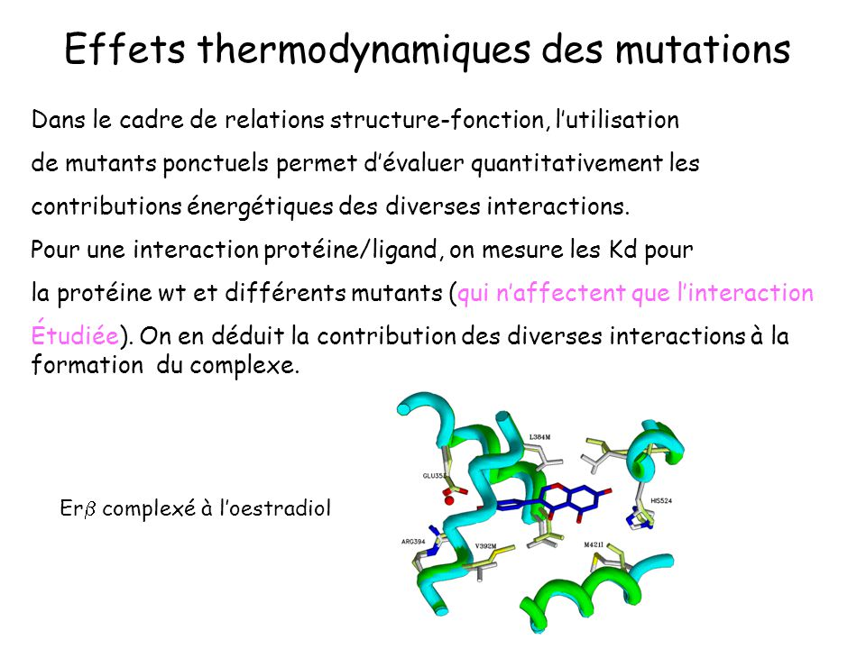 wt: 3 interactions mt: 2 interactions P(wt) + L P(wt)-L P(mt) + L P(mt)-L rG° = rG° (mt) – rG° (wt) avec rG = -RTln ([P-L]/[P][L]) rG° (wt) rG° (mt) G°#0