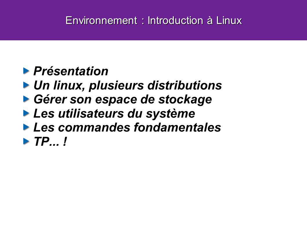 Présentation Un linux, plusieurs distributions Gérer son espace de stockage Les utilisateurs du système Les commandes fondamentales TP... ! Environnem