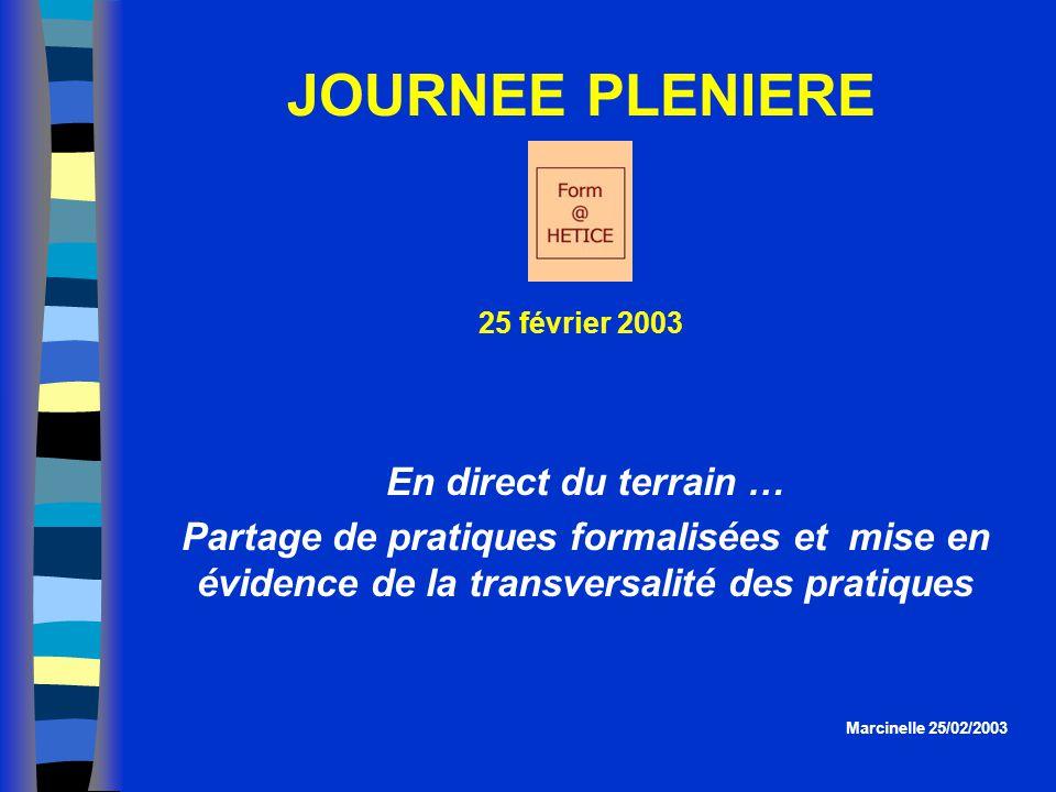 En direct du terrain … Partage de pratiques formalisées et mise en évidence de la transversalité des pratiques JOURNEE PLENIERE 25 février 2003 Marcin