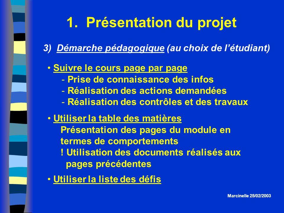 1. Présentation du projet Utiliser la liste des défis Marcinelle 25/02/2003 3) Démarche pédagogique (au choix de létudiant) Suivre le cours page par p