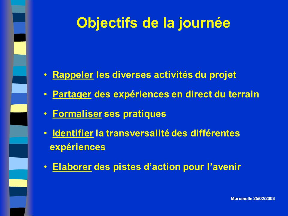 Objectifs de la journée Rappeler les diverses activités du projet Partager des expériences en direct du terrain Formaliser ses pratiques Identifier la