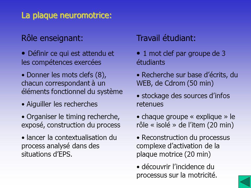 La plaque neuromotrice: Rôle enseignant: Définir ce qui est attendu et les compétences exercées Donner les mots clefs (8), chacun correspondant à un é