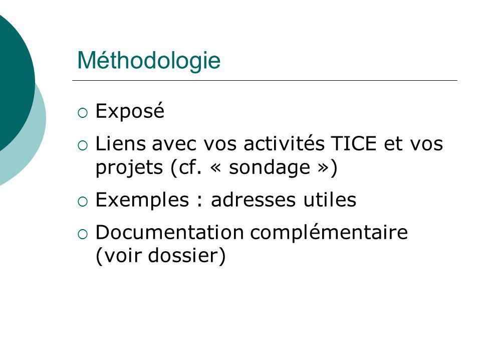 Méthodologie Exposé Liens avec vos activités TICE et vos projets (cf. « sondage ») Exemples : adresses utiles Documentation complémentaire (voir dossi