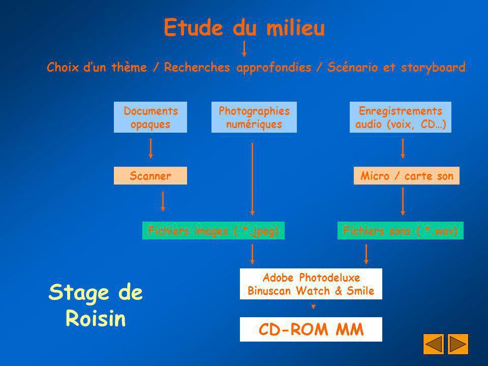 Stage de Roisin Choix dun thème / Recherches approfondies / Scénario et storyboard Documents opaques Photographies numériques Enregistrements audio (v