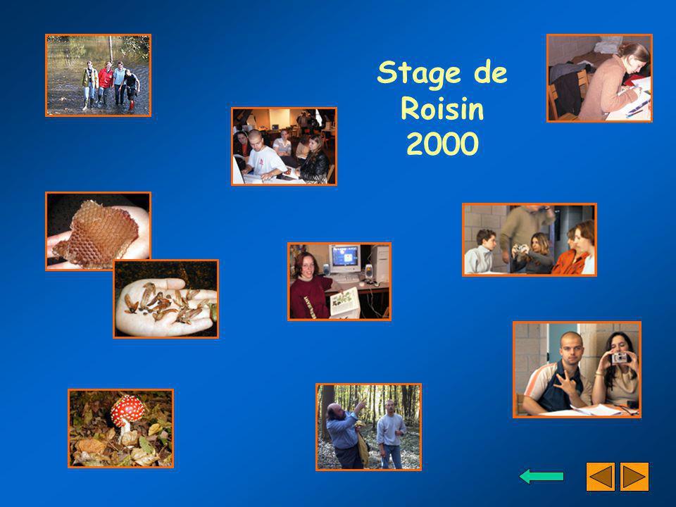 Stage de Roisin 2000