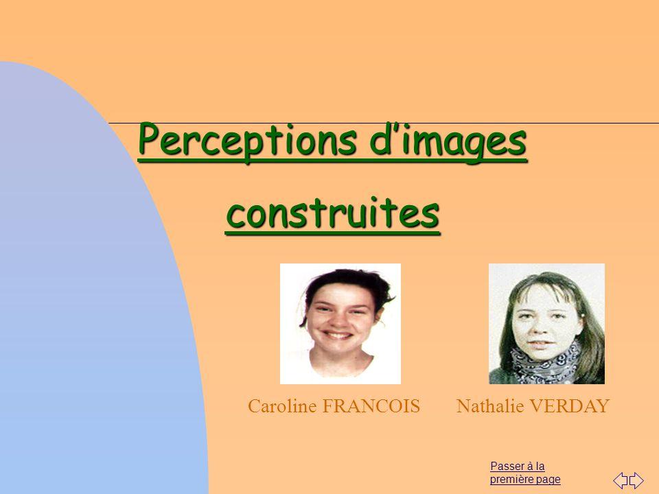 Passer à la première page Caroline FRANCOIS Perceptions dimages construites Nathalie VERDAY