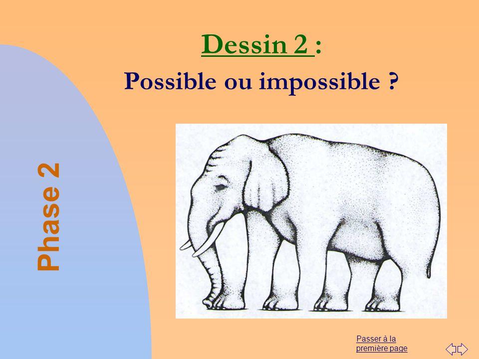 Passer à la première page Dessin 2 : Possible ou impossible ? Phase 2
