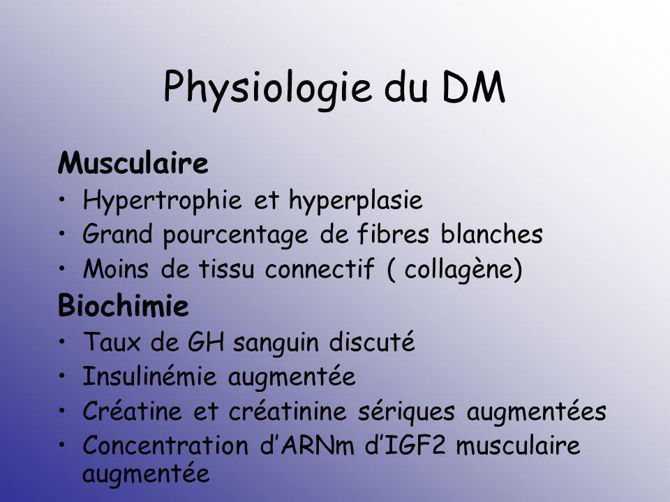 Physiologie du DM Musculaire Hypertrophie et hyperplasie Grand pourcentage de fibres blanches Moins de tissu connectif ( collagène) Biochimie Taux de