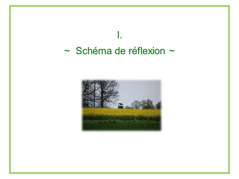 Lindice de Périphéralité : conséquences 2.Le classement des communes nest pas conservé : Figure : Densité de population et indice Pi pour quelques communes wallonnes.