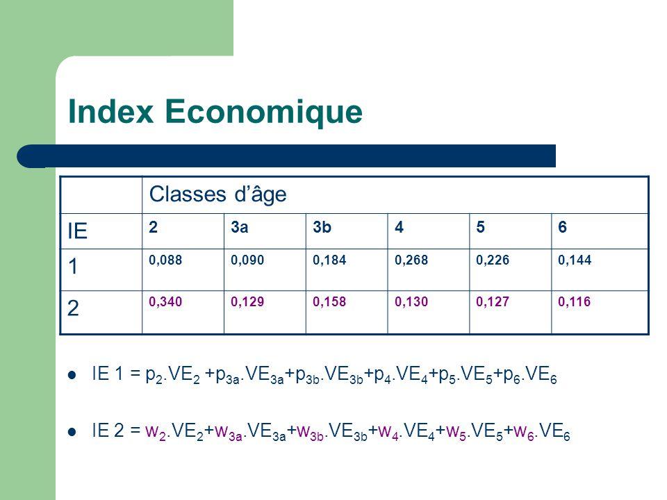 Index Economique IE 1 = p 2.VE 2 +p 3a.VE 3a +p 3b.VE 3b +p 4.VE 4 +p 5.VE 5 +p 6.VE 6 IE 2 = w 2.VE 2 +w 3a.VE 3a +w 3b.VE 3b +w 4.VE 4 +w 5.VE 5 +w