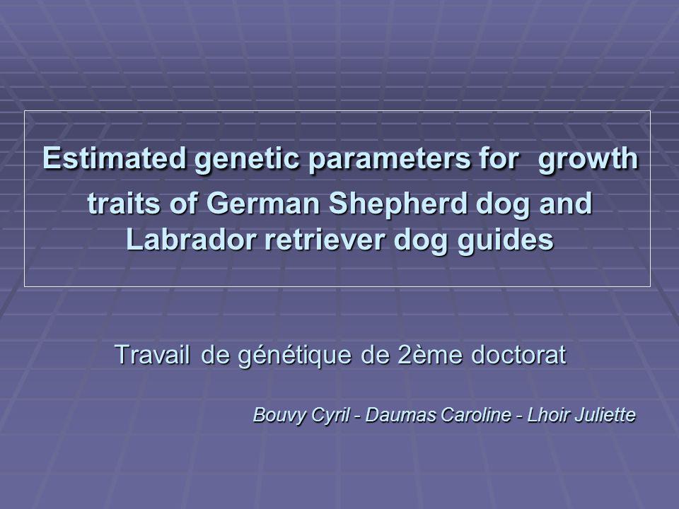 Estimated genetic parameters for growth traits of German Shepherd dog and Labrador retriever dog guides Travail de génétique de 2ème doctorat Bouvy Cyril - Daumas Caroline - Lhoir Juliette Bouvy Cyril - Daumas Caroline - Lhoir Juliette