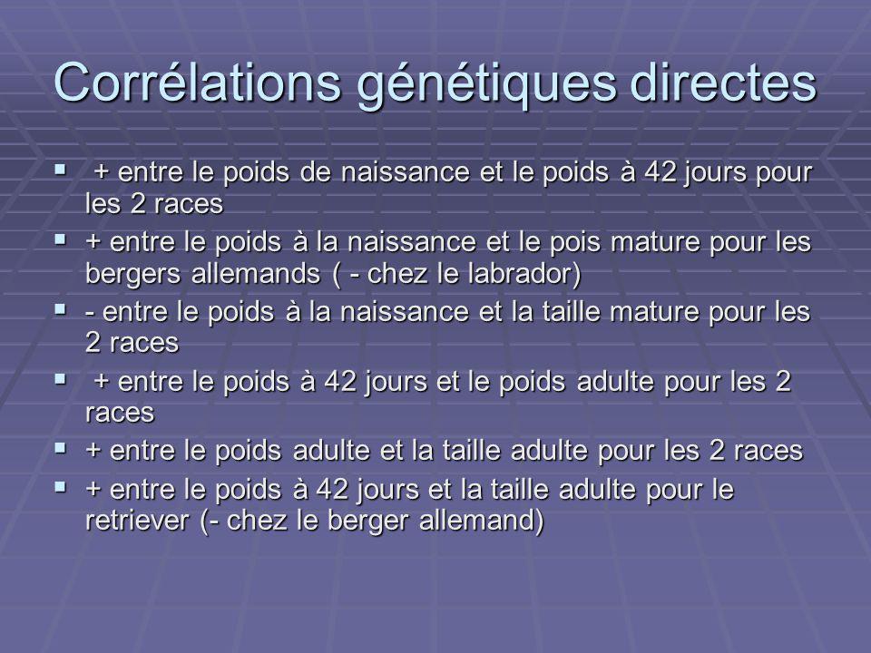 Corrélations génétiques directes + entre le poids de naissance et le poids à 42 jours pour les 2 races + entre le poids de naissance et le poids à 42 jours pour les 2 races + entre le poids à la naissance et le pois mature pour les bergers allemands ( - chez le labrador) + entre le poids à la naissance et le pois mature pour les bergers allemands ( - chez le labrador) - entre le poids à la naissance et la taille mature pour les 2 races - entre le poids à la naissance et la taille mature pour les 2 races + entre le poids à 42 jours et le poids adulte pour les 2 races + entre le poids à 42 jours et le poids adulte pour les 2 races + entre le poids adulte et la taille adulte pour les 2 races + entre le poids adulte et la taille adulte pour les 2 races + entre le poids à 42 jours et la taille adulte pour le retriever (- chez le berger allemand) + entre le poids à 42 jours et la taille adulte pour le retriever (- chez le berger allemand)