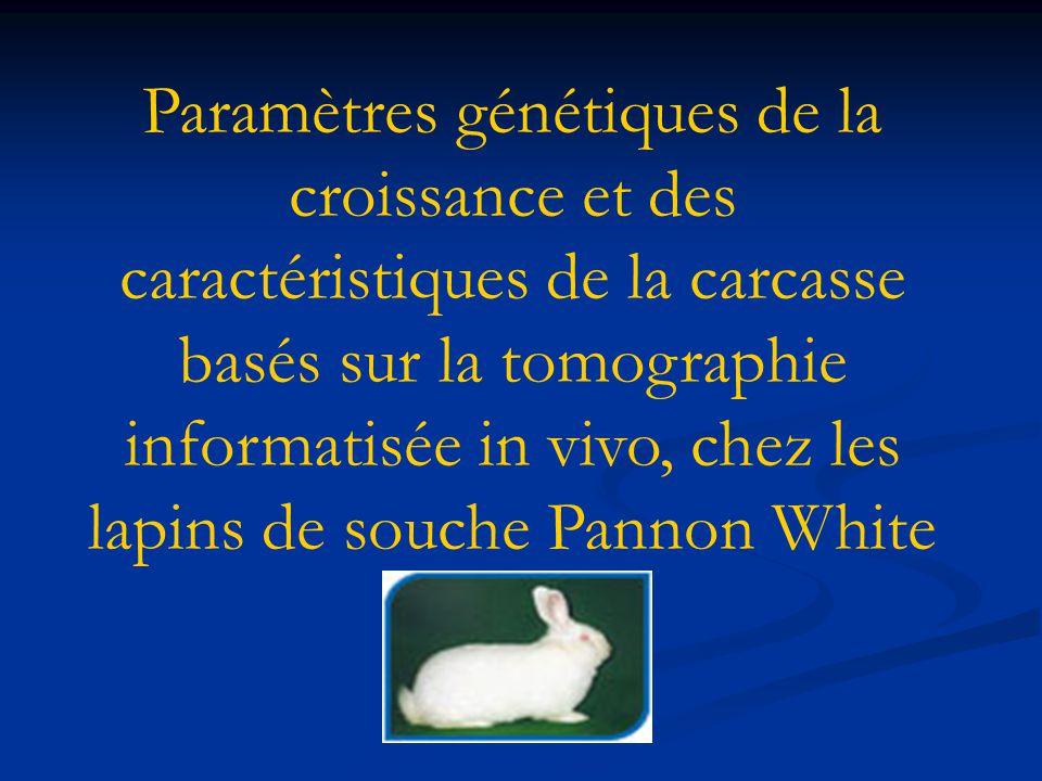 Paramètres génétiques de la croissance et des caractéristiques de la carcasse basés sur la tomographie informatisée in vivo, chez les lapins de souche