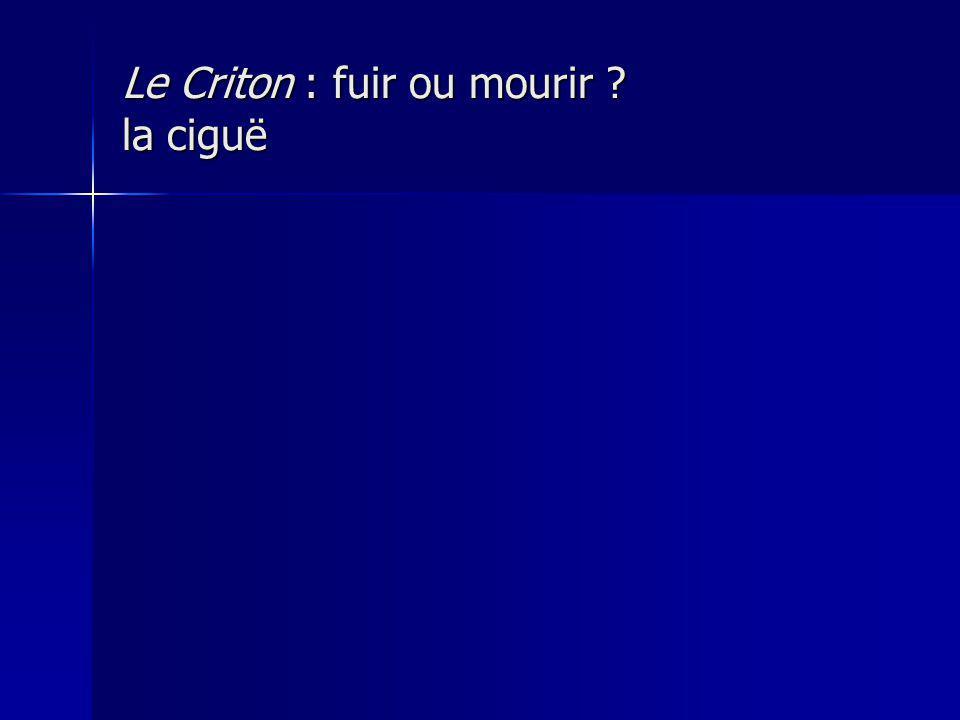 Le Criton : fuir ou mourir ? la ciguë