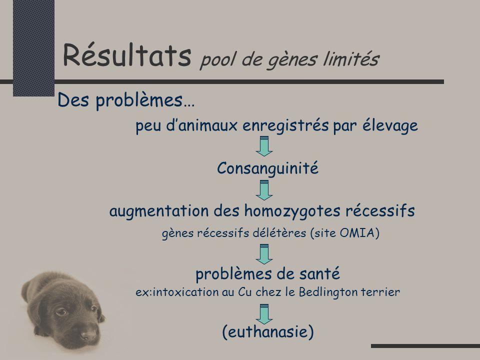 Résultats pool de gènes limités Des problèmes… peu danimaux enregistrés par élevage Consanguinité augmentation des homozygotes récessifs gènes récessifs délétères (site OMIA) problèmes de santé ex:intoxication au Cu chez le Bedlington terrier (euthanasie)