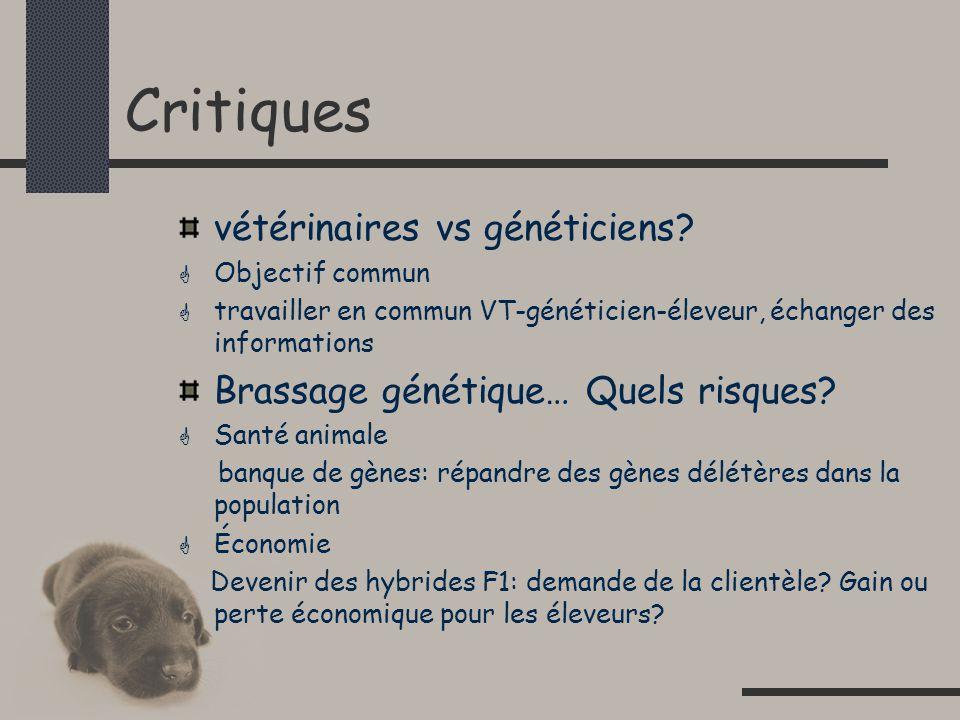 Critiques vétérinaires vs généticiens.