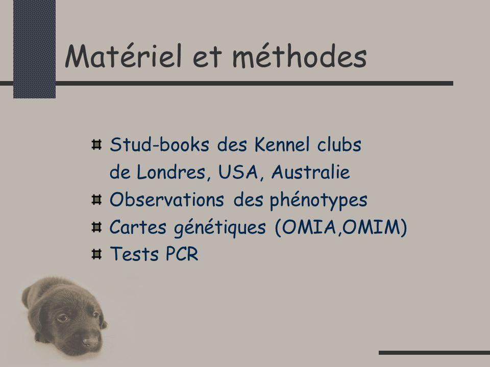 Matériel et méthodes Stud-books des Kennel clubs de Londres, USA, Australie Observations des phénotypes Cartes génétiques (OMIA,OMIM) Tests PCR