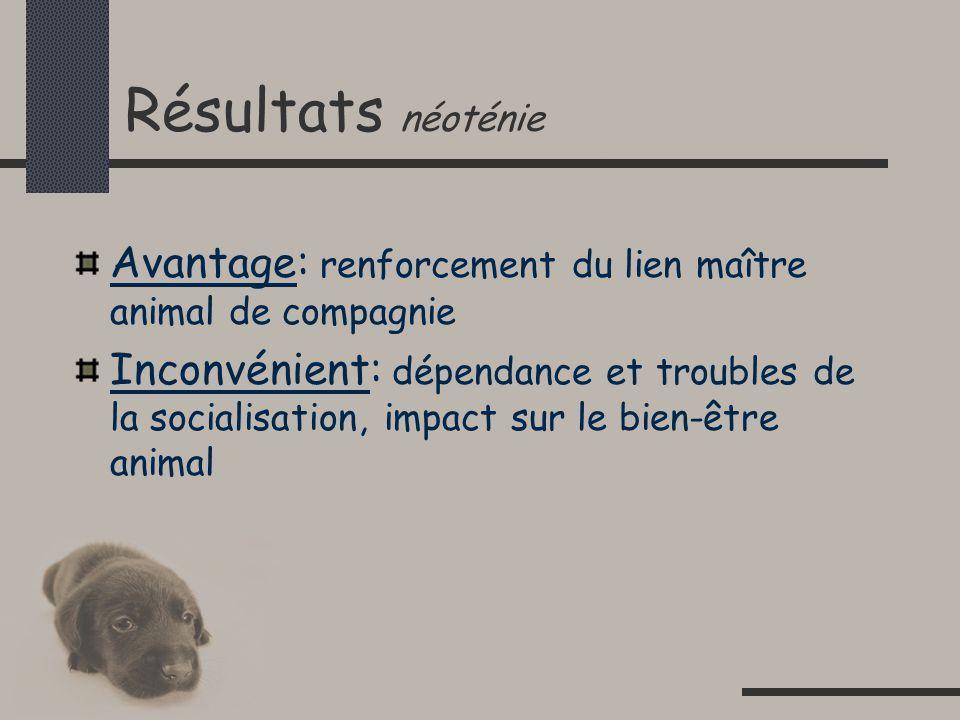 Résultats néoténie Avantage: renforcement du lien maître animal de compagnie Inconvénient: dépendance et troubles de la socialisation, impact sur le bien-être animal