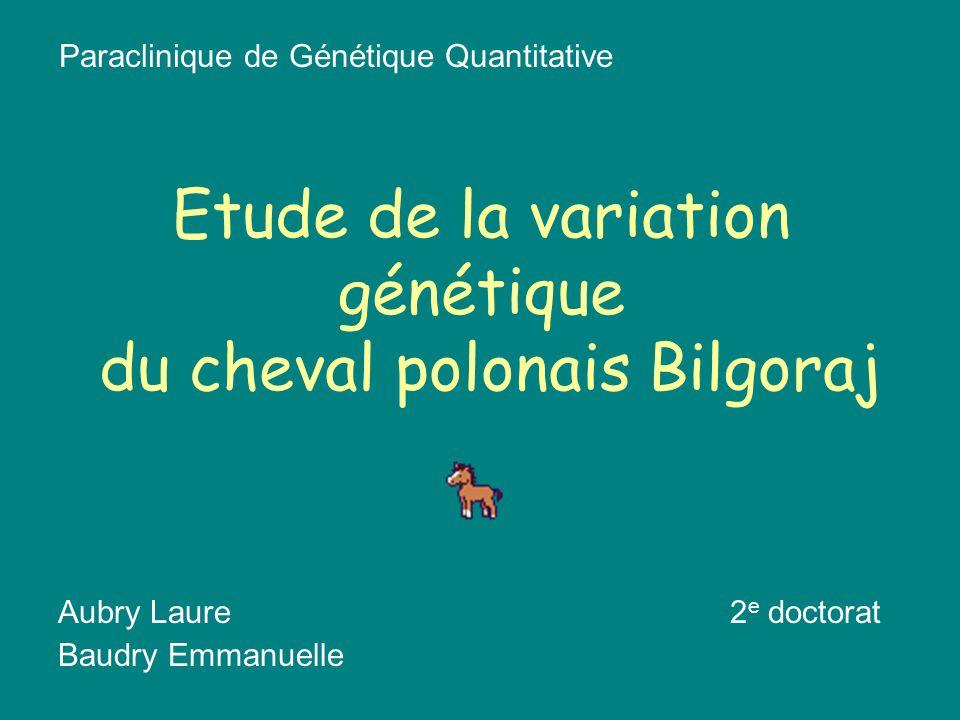 Etude de la variation génétique du cheval polonais Bilgoraj Aubry Laure2 e doctorat Baudry Emmanuelle Paraclinique de Génétique Quantitative