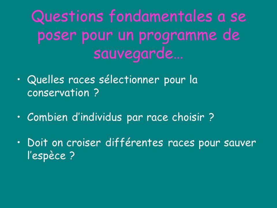 Questions fondamentales a se poser pour un programme de sauvegarde… Quelles races sélectionner pour la conservation ? Combien dindividus par race choi