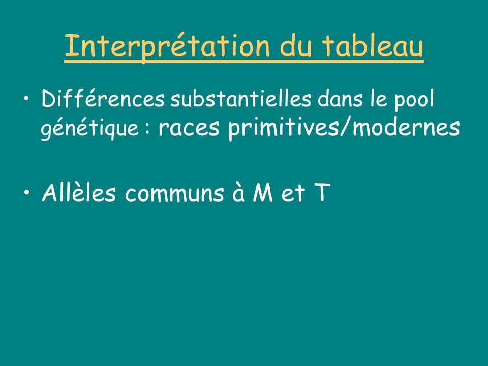 Différences substantielles dans le pool génétique : races primitives/modernes Allèles communs à M et T Interprétation du tableau