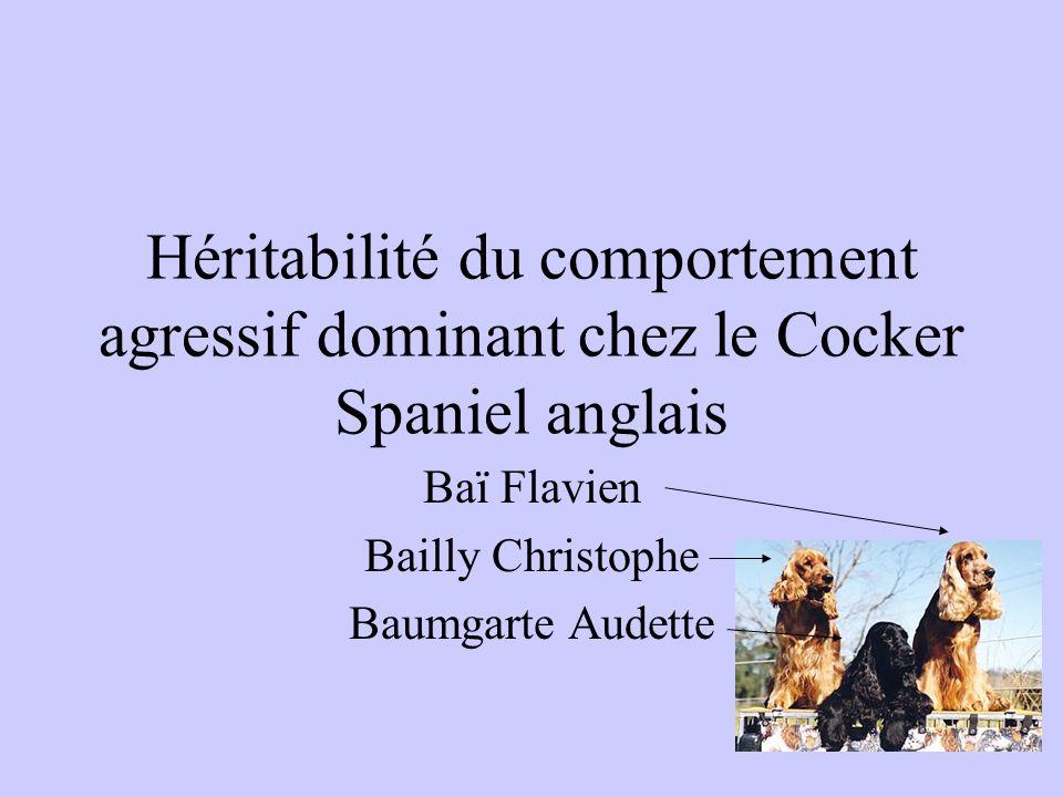 Héritabilité du comportement agressif dominant chez le Cocker Spaniel anglais Baï Flavien Bailly Christophe Baumgarte Audette
