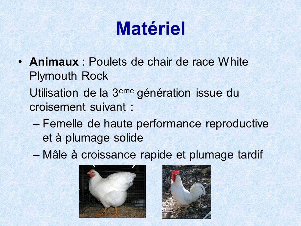 Matériel Conditions délevage des animaux: 2,98kcal/kg avec 21% de protéine 23h/j de lumière artificielle 20 animaux/m 2 2 groupes sont constitués: Groupe 1 (4202) : naissance=30° jusquà 10° à 22j 10° jusquà 35j (abattage) Groupe 2 (795) : naissance=34° jusquà 18° à 35j 18°jusquà 49j (abattage)