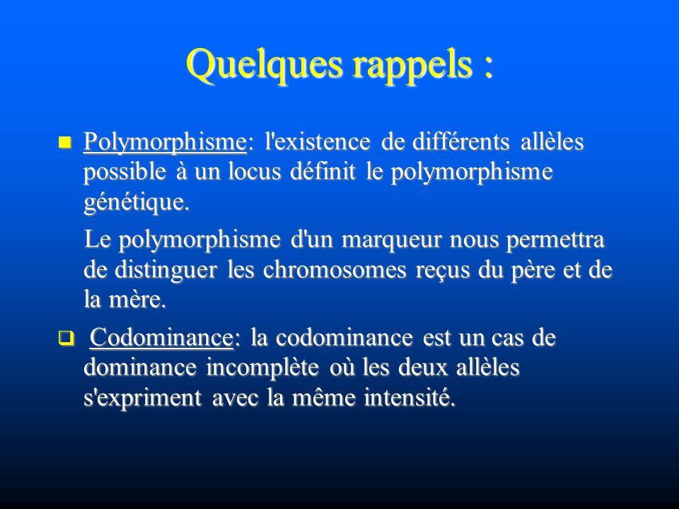 Quelques rappels : Polymorphisme: l'existence de différents allèles possible à un locus définit le polymorphisme génétique. Polymorphisme: l'existence