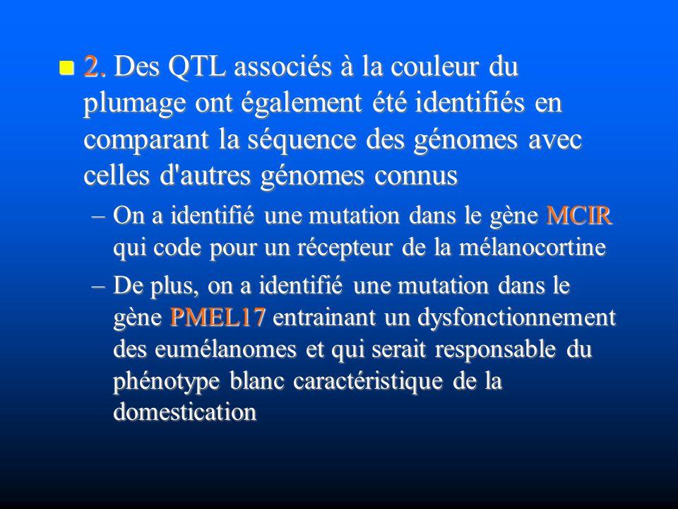 2. Des QTL associés à la couleur du plumage ont également été identifiés en comparant la séquence des génomes avec celles d'autres génomes connus 2. D