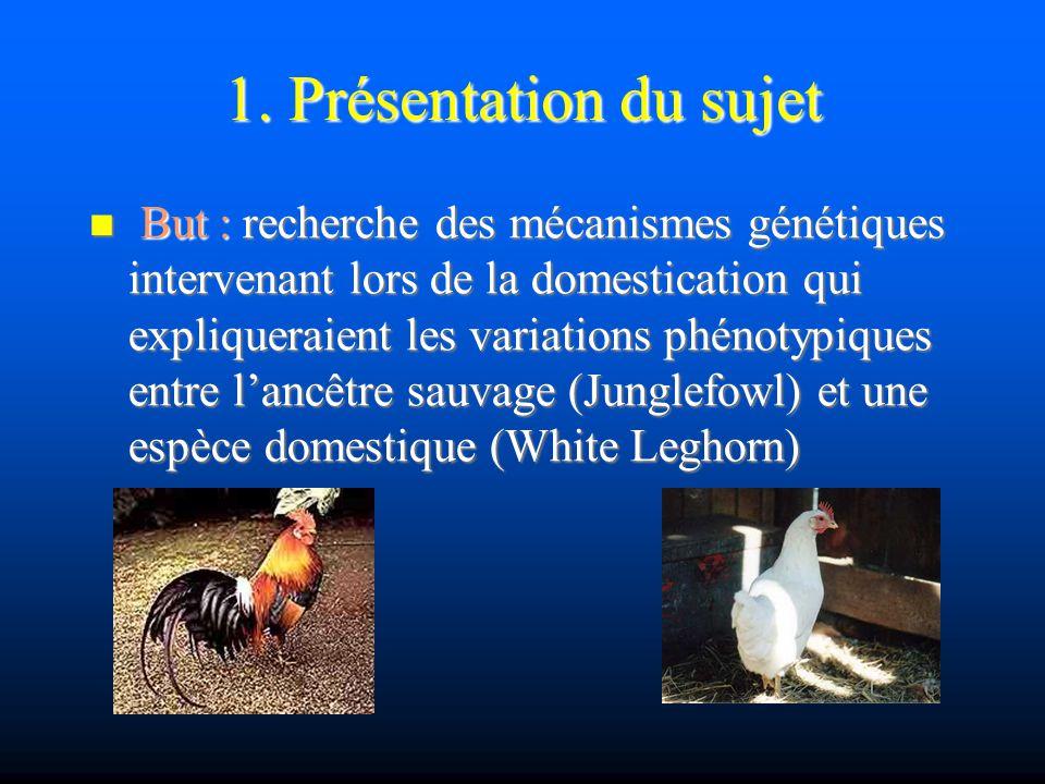 2.Matériel Pourquoi le poulet. Pourquoi le poulet.