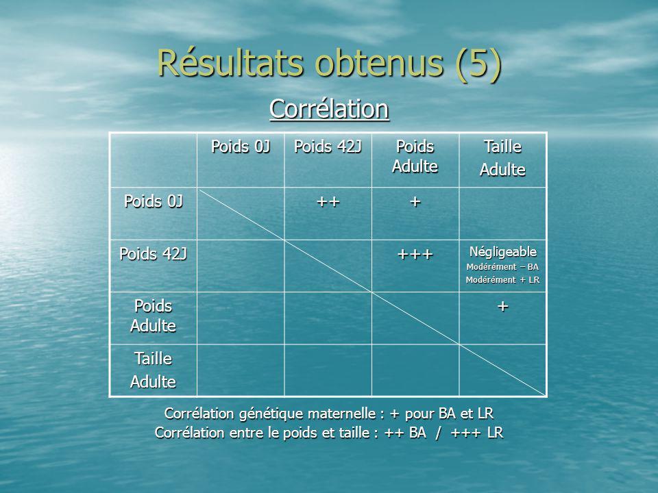 Résultats obtenus (5) Corrélation Corrélation génétique maternelle : + pour BA et LR Corrélation entre le poids et taille : ++ BA / +++ LR Poids 0J Po