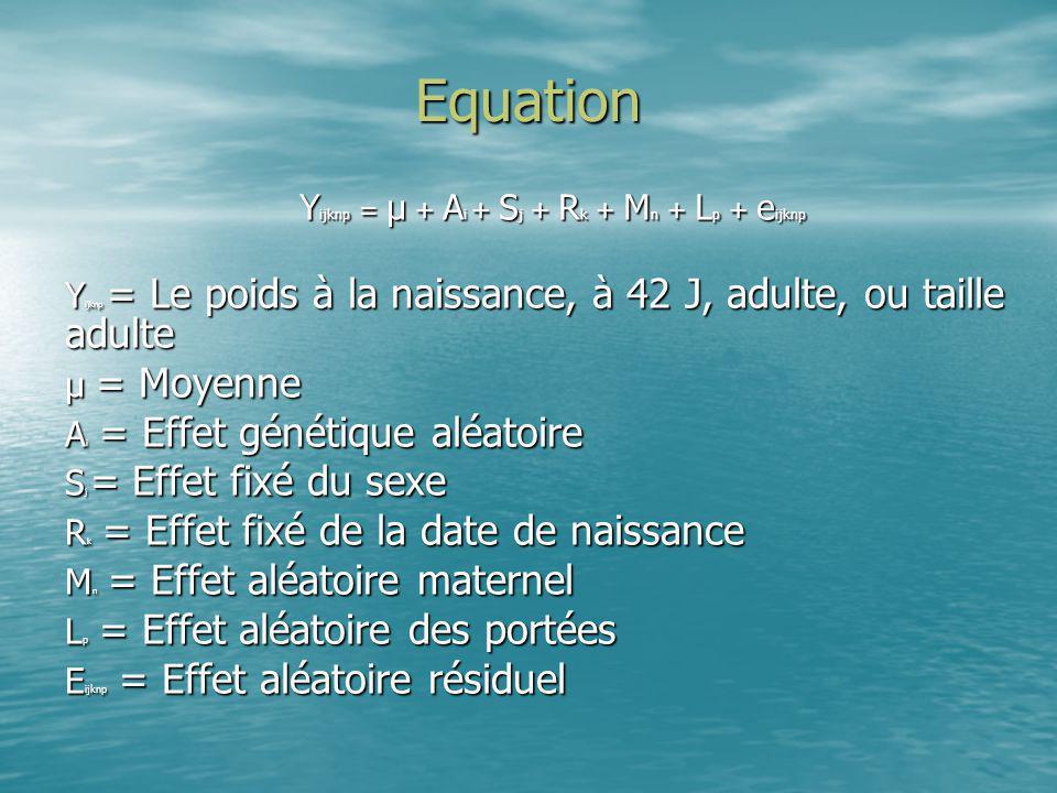 Equation Y ijknp = Le poids à la naissance, à 42 J, adulte, ou taille adulte μ = Moyenne A i = Effet génétique aléatoire S j = Effet fixé du sexe R k