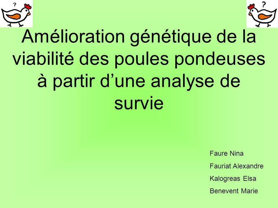 Bibliographie Genetic improvement of laying hens viability using survival analysis INRA (V.Ducrocq, B.Besbes, M.Protais) Cours de premier doctorat, génétique quantitative (J.Detilleux) Cours de premier doctorat, clinique aviaire (D.Marlier) Cours de premier doctorat décologie (B.Nicks) http://www.inra.fr/productions-animales/an2004 /num241/beaumon/cb241.htmhttp://www.inra.fr/productions-animales/an2004 /num241/beaumon/cb241.htm