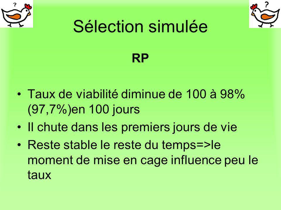 Sélection simulée RP Taux de viabilité diminue de 100 à 98% (97,7%)en 100 jours Il chute dans les premiers jours de vie Reste stable le reste du temps